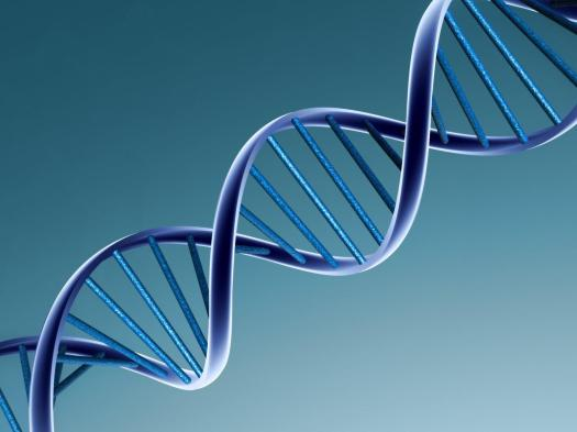DNA (1)